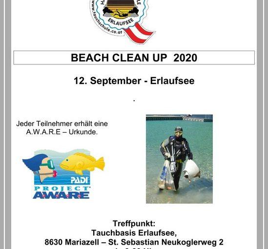 12 Beach Clean Up